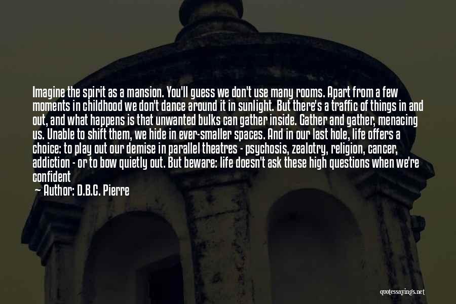 Best Sunlight Quotes By D.B.C. Pierre