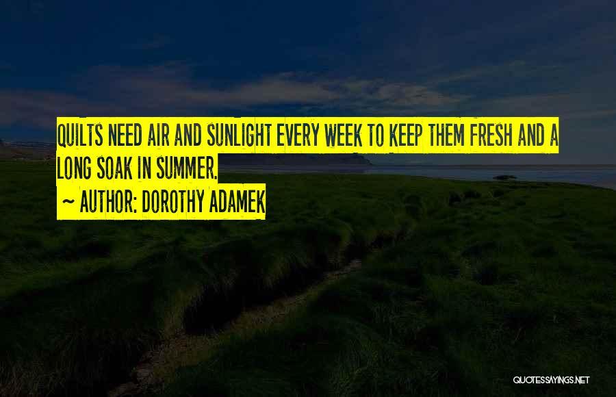 Best Sunlight Quotes By Dorothy Adamek