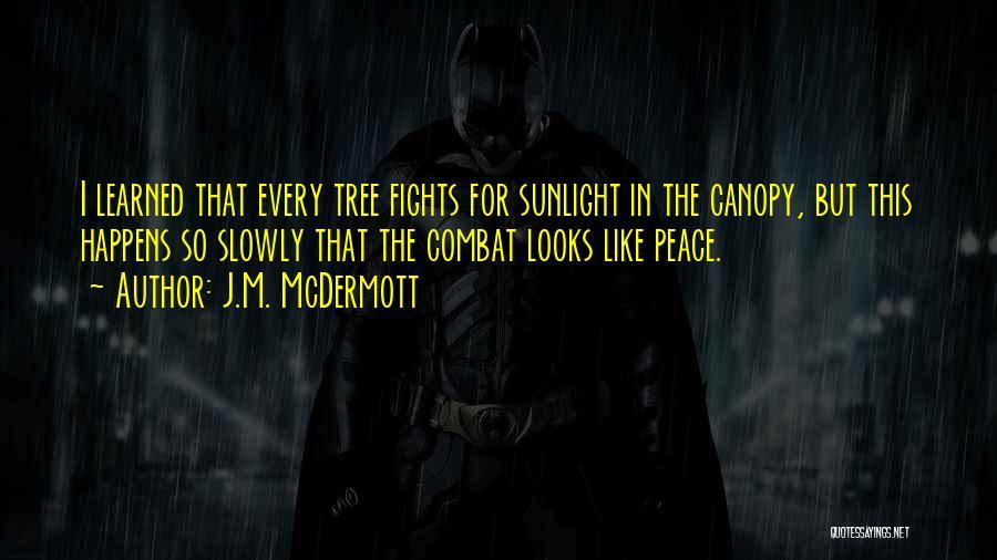 Best Sunlight Quotes By J.M. McDermott