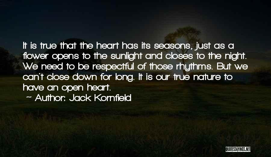 Best Sunlight Quotes By Jack Kornfield