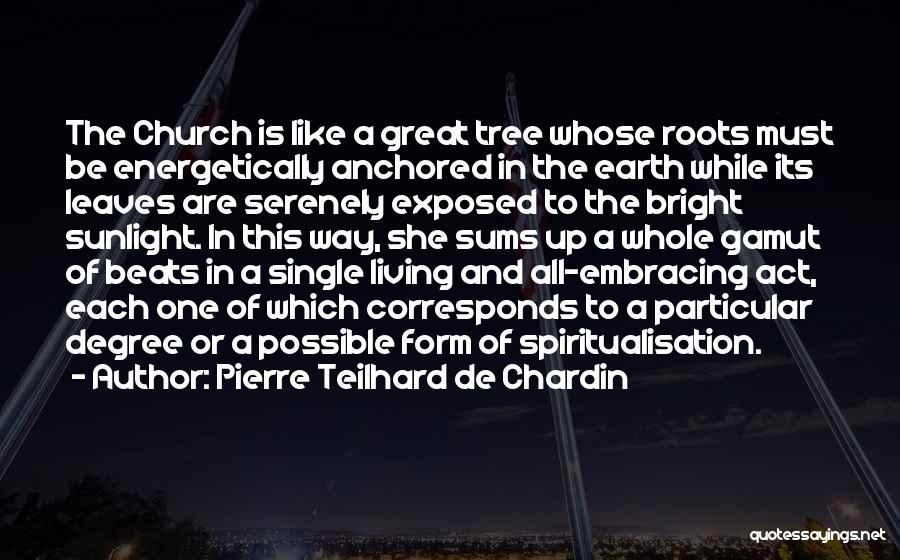 Best Sunlight Quotes By Pierre Teilhard De Chardin