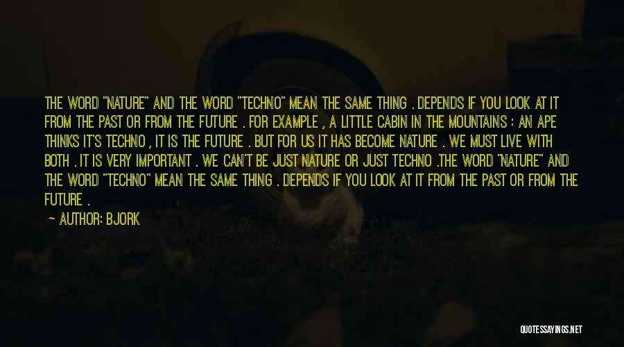Best Techno Quotes By Bjork
