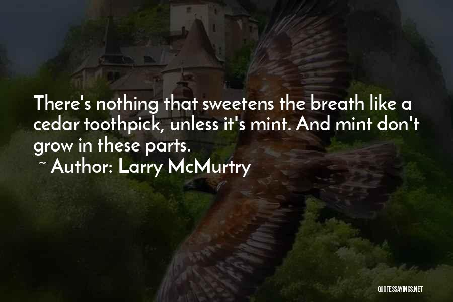 Best Toothpick Quotes By Larry McMurtry
