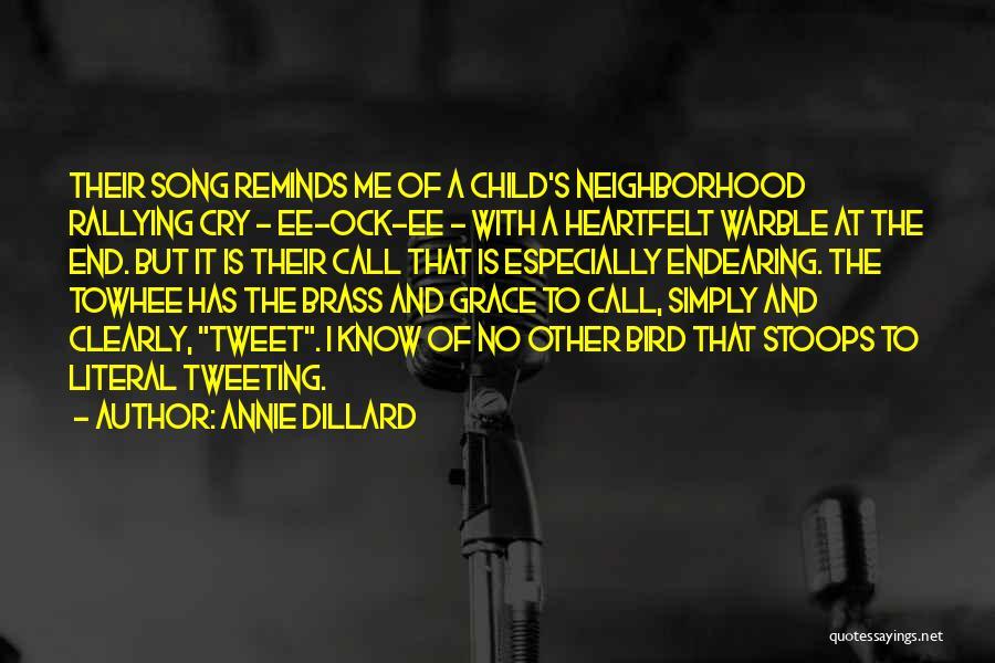 Best Tweet Quotes By Annie Dillard