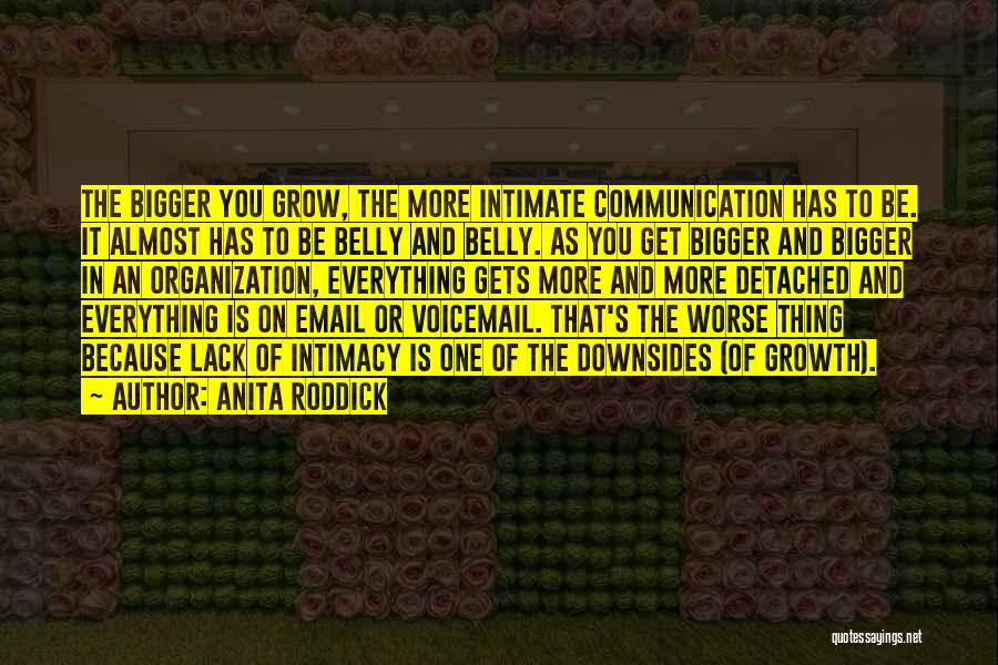 Best Voicemail Quotes By Anita Roddick