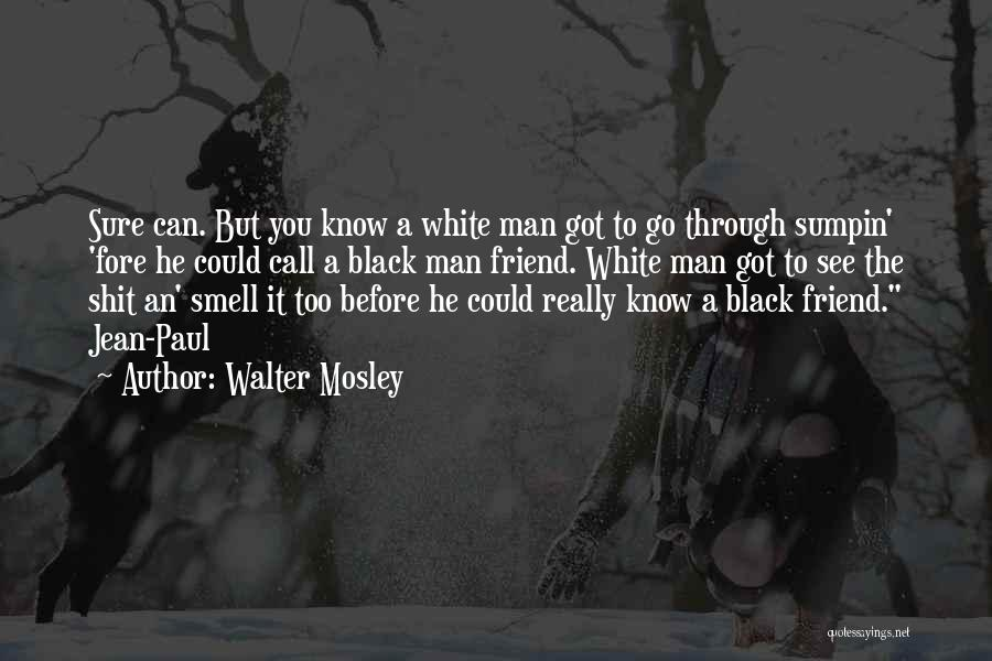 Best Walter White Quotes By Walter Mosley