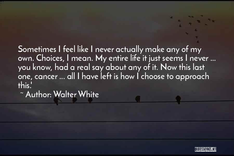Best Walter White Quotes By Walter White