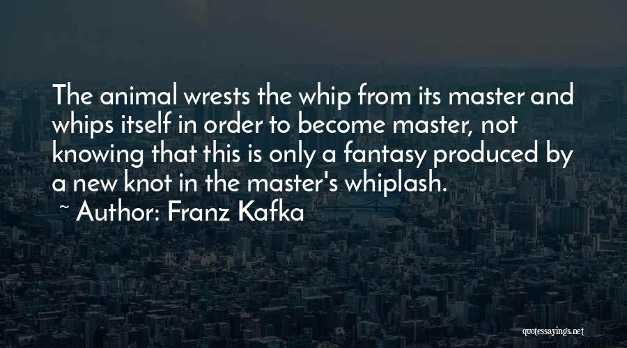 Best Whiplash Quotes By Franz Kafka