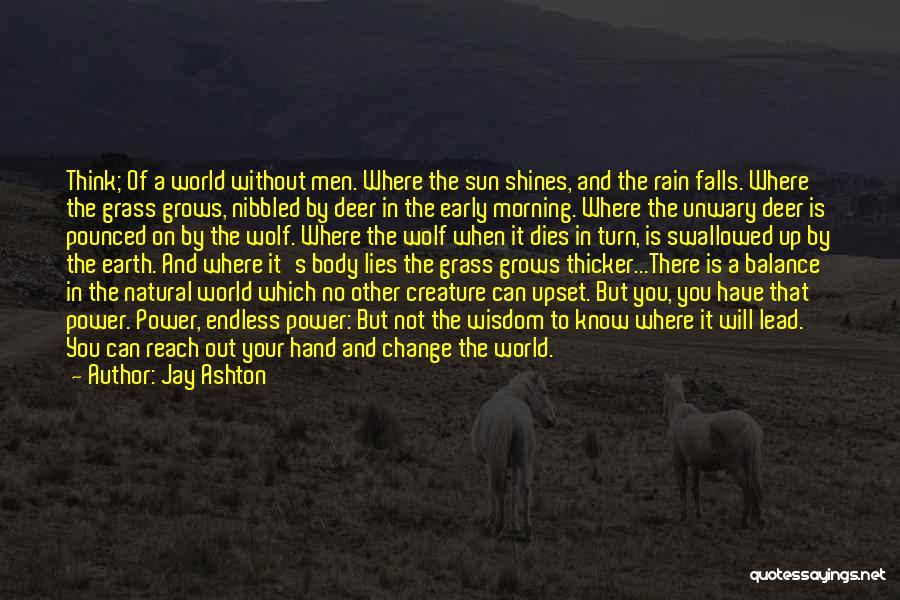 Best Wolf's Rain Quotes By Jay Ashton