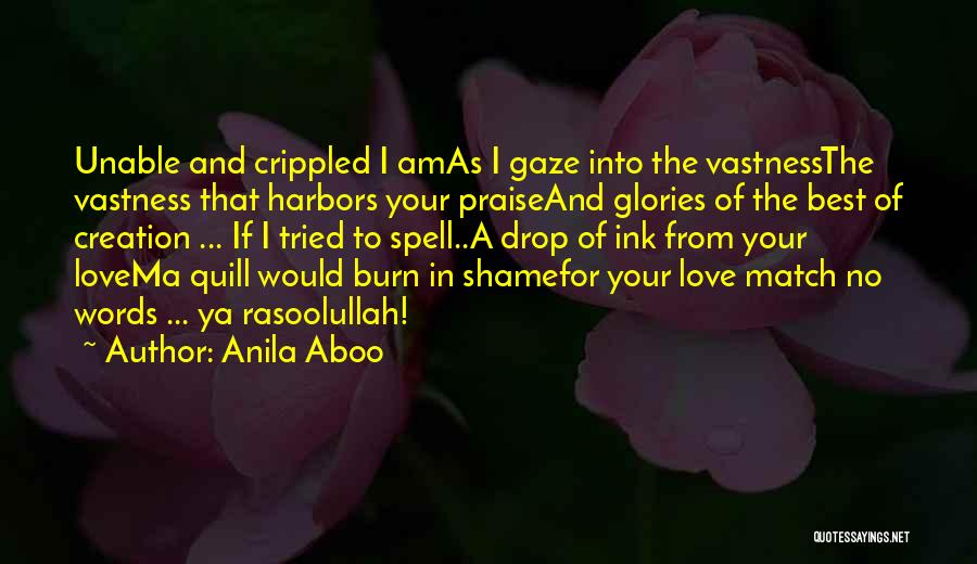 Best Ya Love Quotes By Anila Aboo