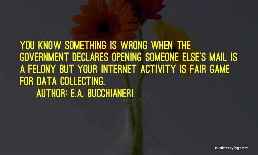 Best You Got Mail Quotes By E.A. Bucchianeri
