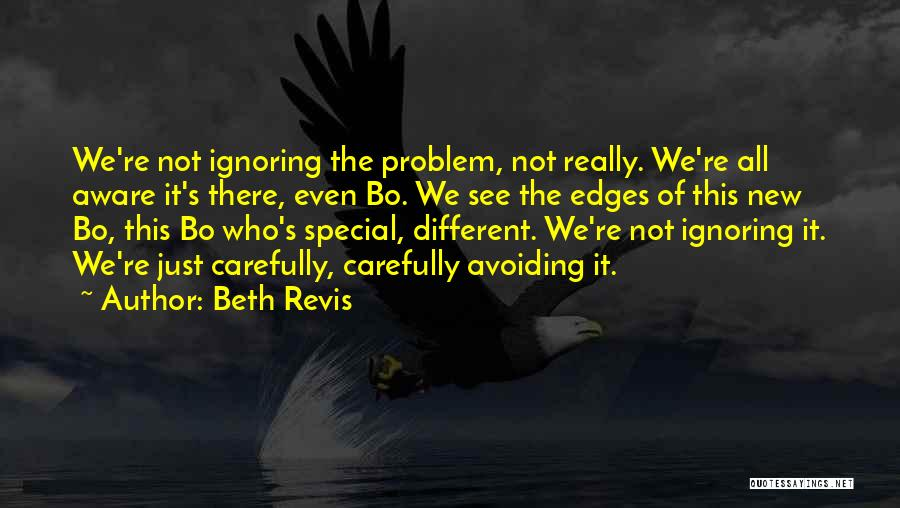 Beth Revis Quotes 1910462
