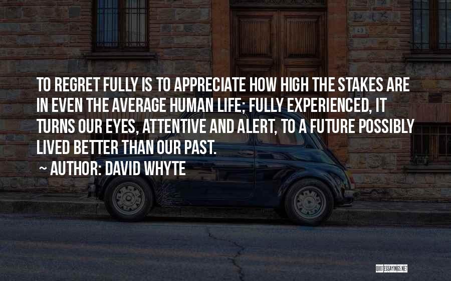 Better Than Average Quotes By David Whyte