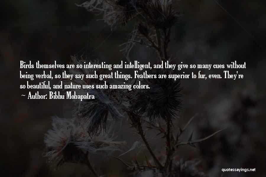 Bibhu Mohapatra Quotes 1781946