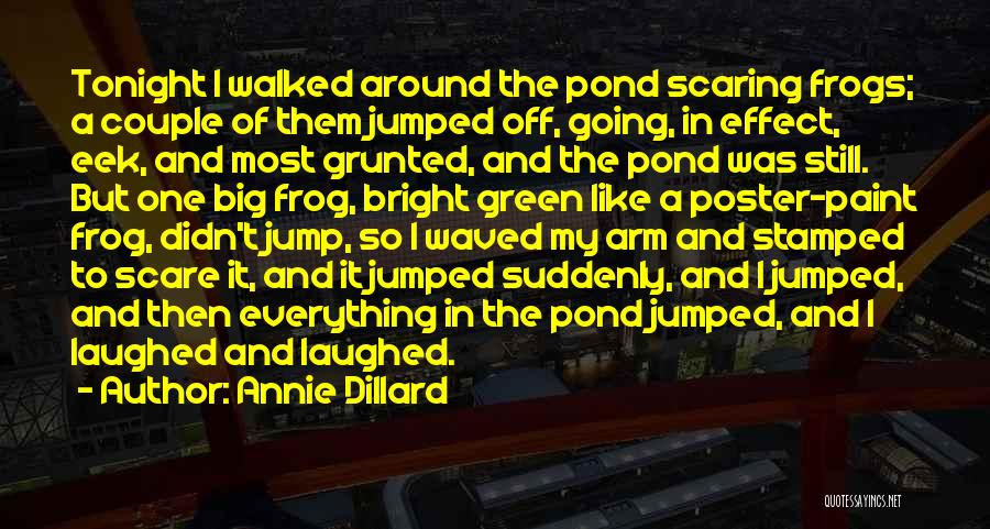Big Arm Quotes By Annie Dillard