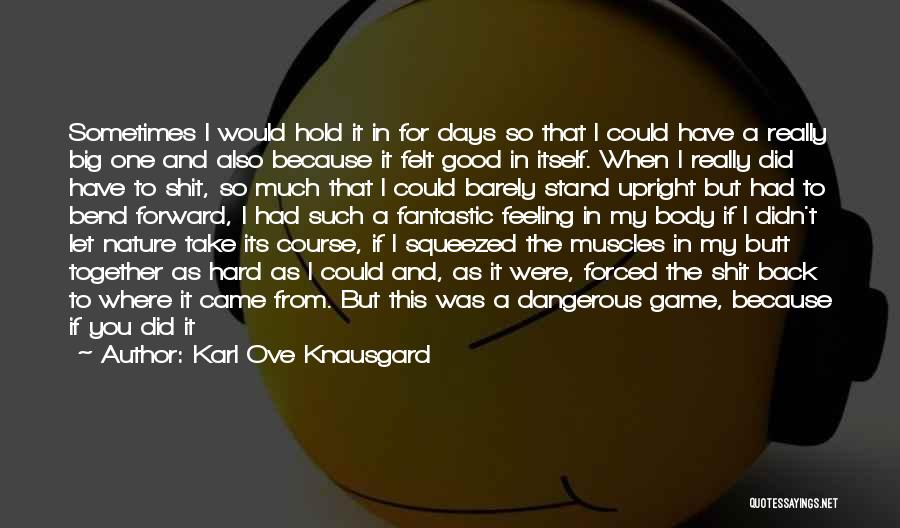 Big Bend Quotes By Karl Ove Knausgard