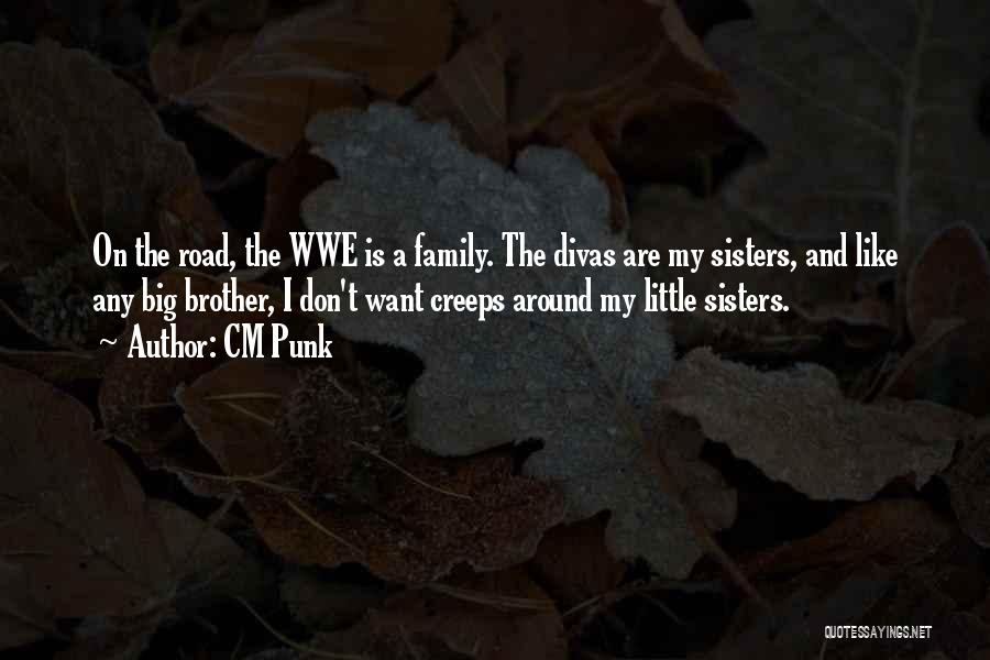 Big Brother Big Sister Quotes By CM Punk