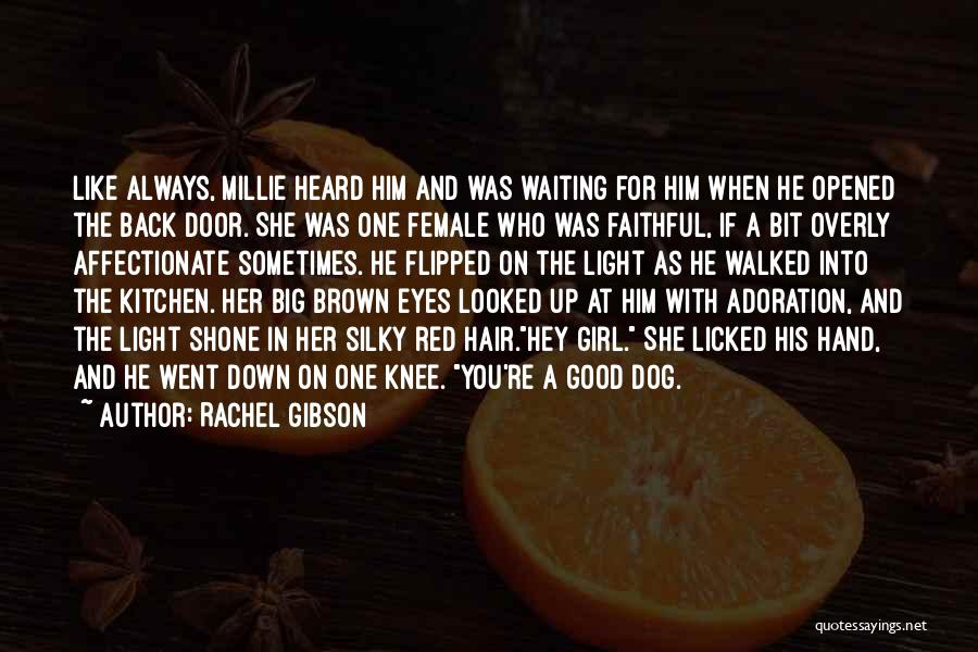 Big Brown Eyes Quotes By Rachel Gibson