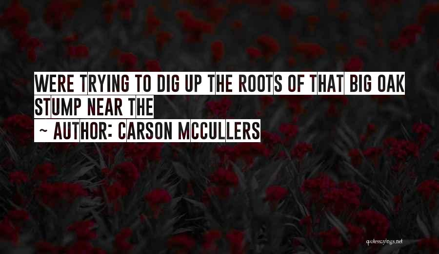 Big Dig Quotes By Carson McCullers