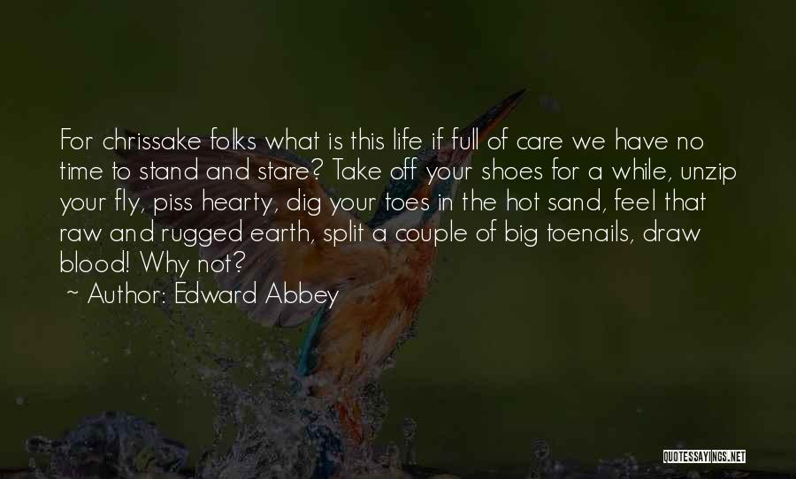 Big Dig Quotes By Edward Abbey
