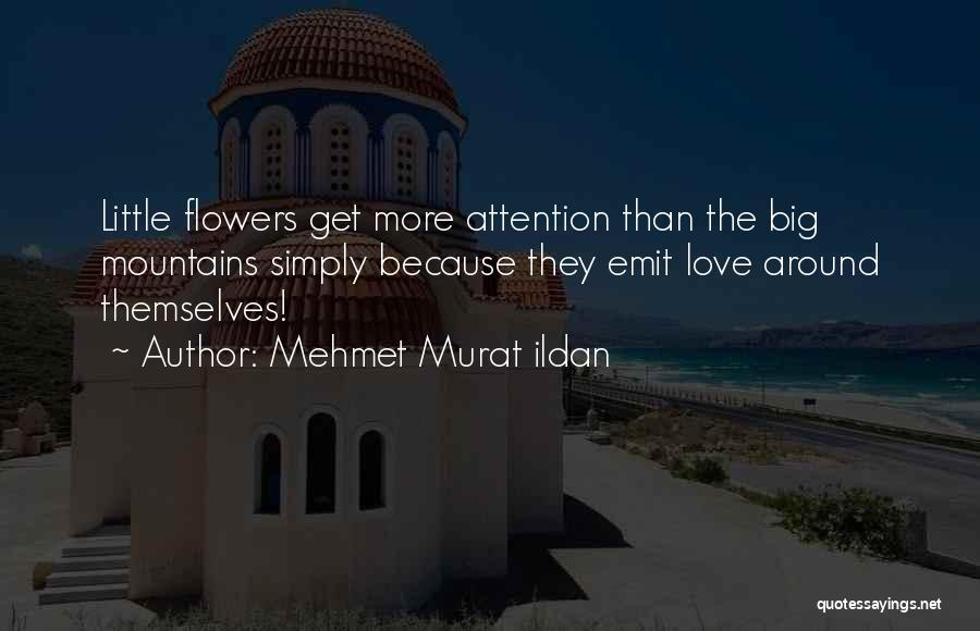Big Little Love Quotes By Mehmet Murat Ildan