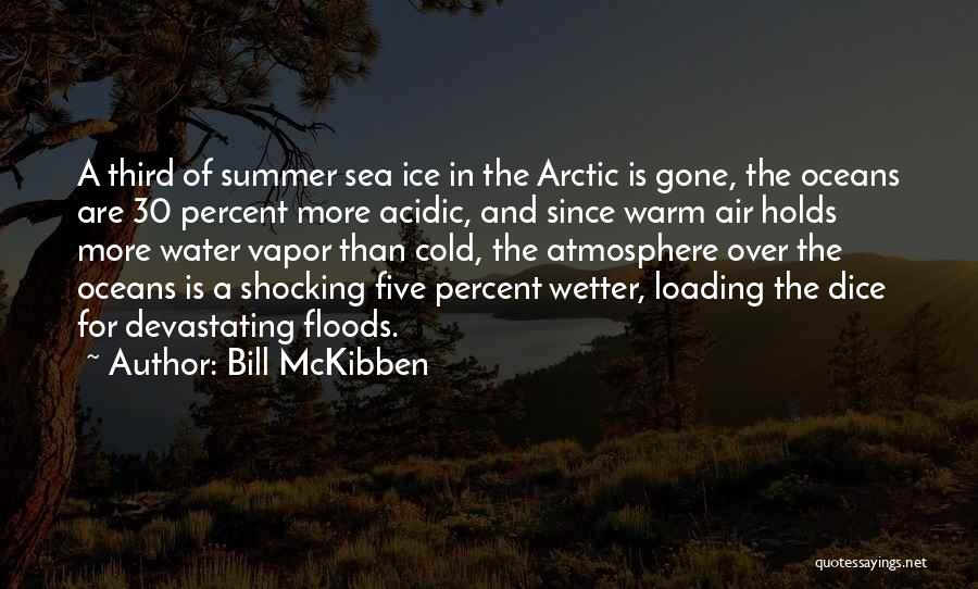 Bill McKibben Quotes 1346559
