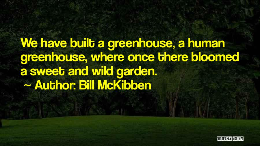 Bill McKibben Quotes 1629726