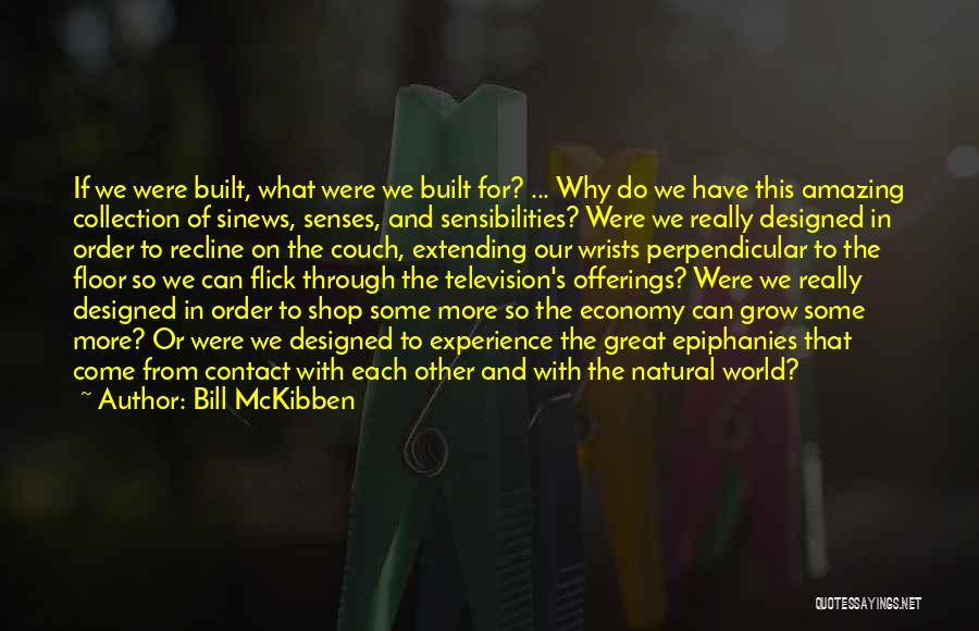 Bill McKibben Quotes 1861452