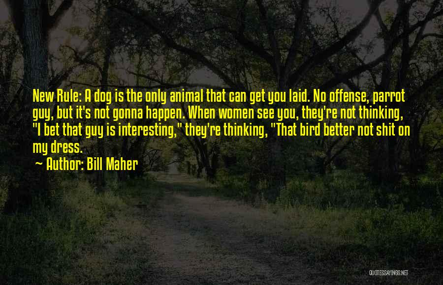 Bird Dog Quotes By Bill Maher