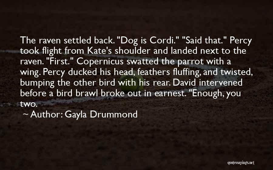Bird Dog Quotes By Gayla Drummond