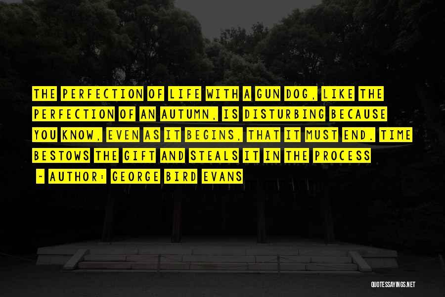 Bird Dog Quotes By George Bird Evans
