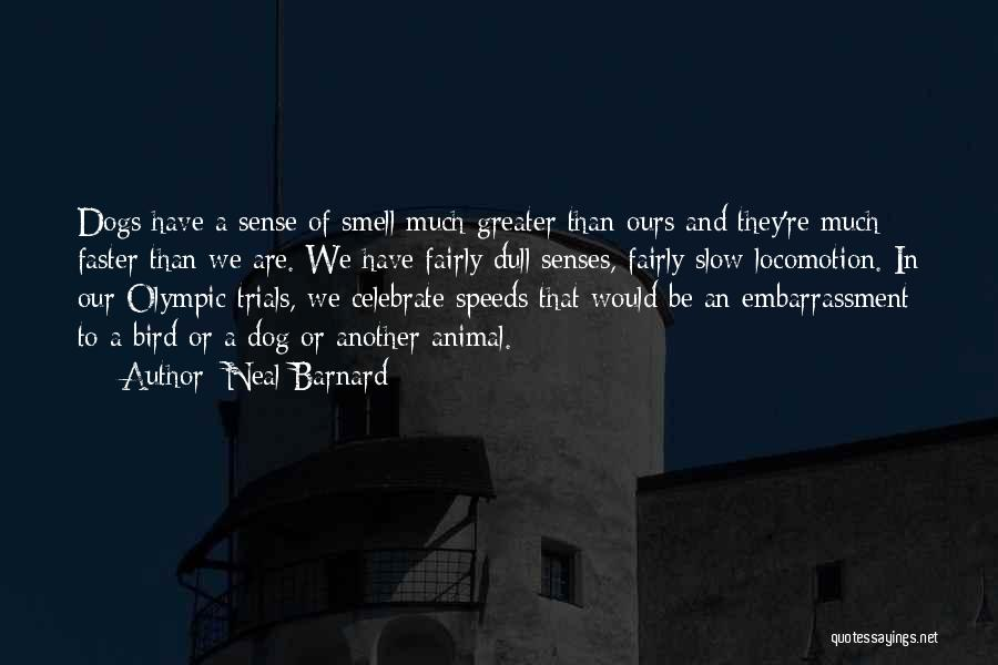 Bird Dog Quotes By Neal Barnard