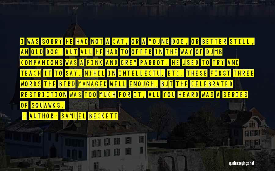 Bird Dog Quotes By Samuel Beckett