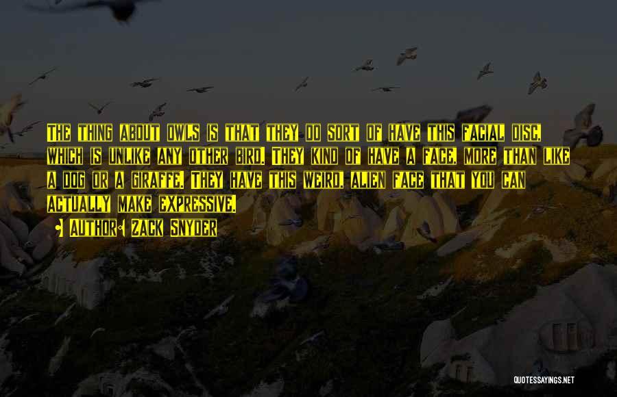 Bird Dog Quotes By Zack Snyder