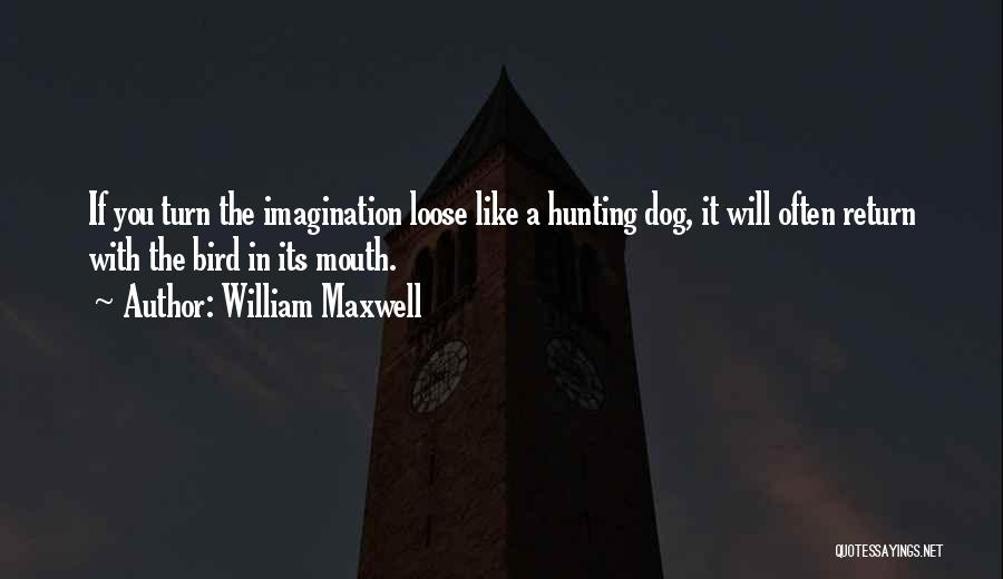 Bird Hunting Dog Quotes By William Maxwell