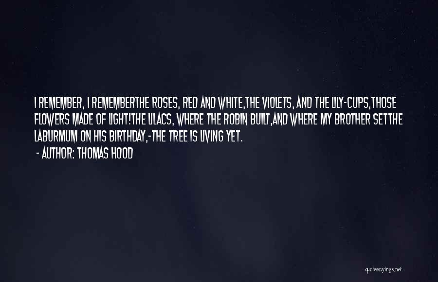 Birthday For Brother Quotes By Thomas Hood