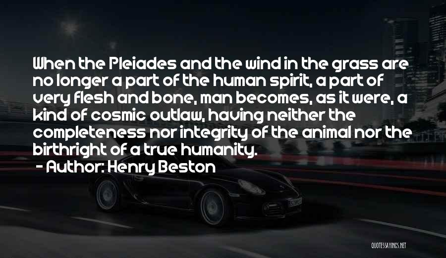 Birthright Quotes By Henry Beston