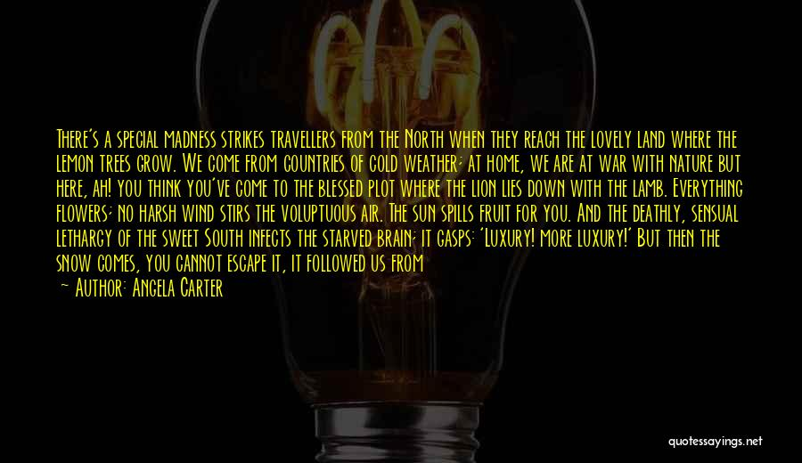 Bitter Cold Quotes By Angela Carter