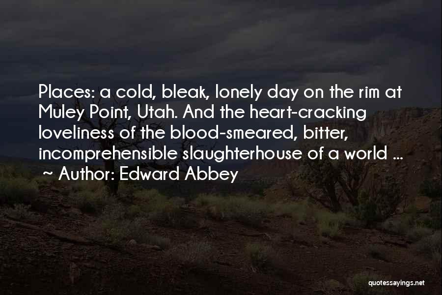 Bitter Cold Quotes By Edward Abbey