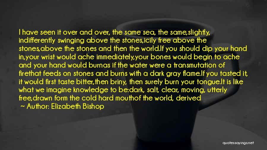 Bitter Cold Quotes By Elizabeth Bishop
