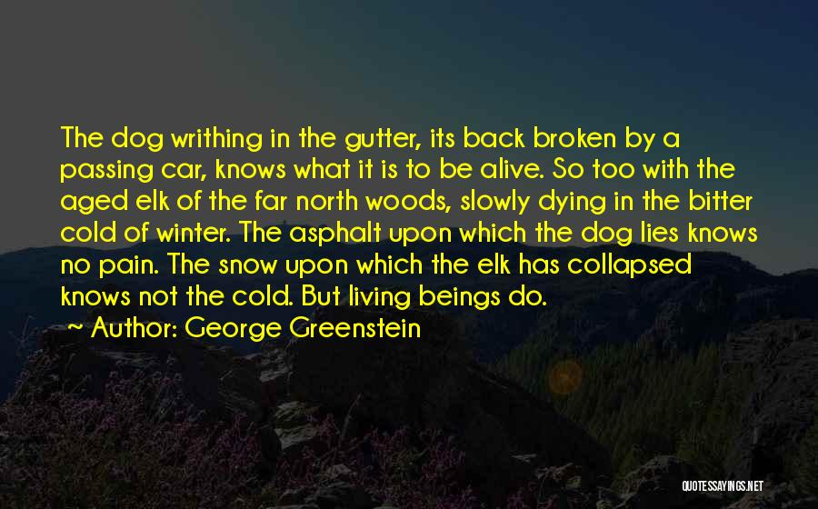 Bitter Cold Quotes By George Greenstein
