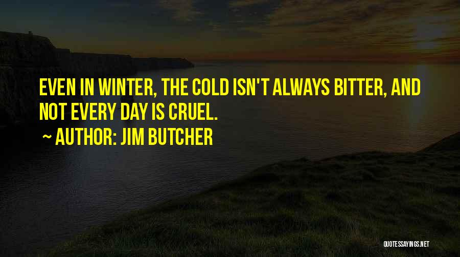 Bitter Cold Quotes By Jim Butcher