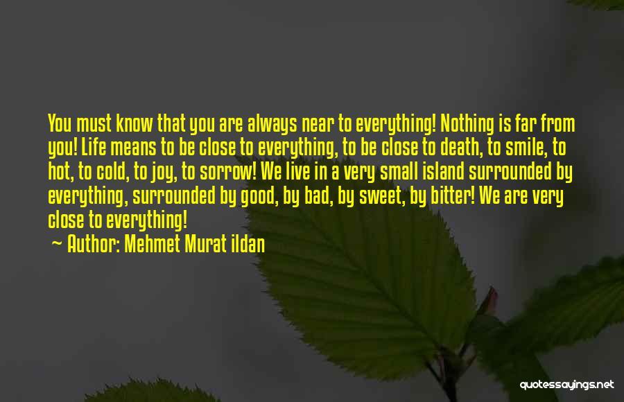 Bitter Cold Quotes By Mehmet Murat Ildan