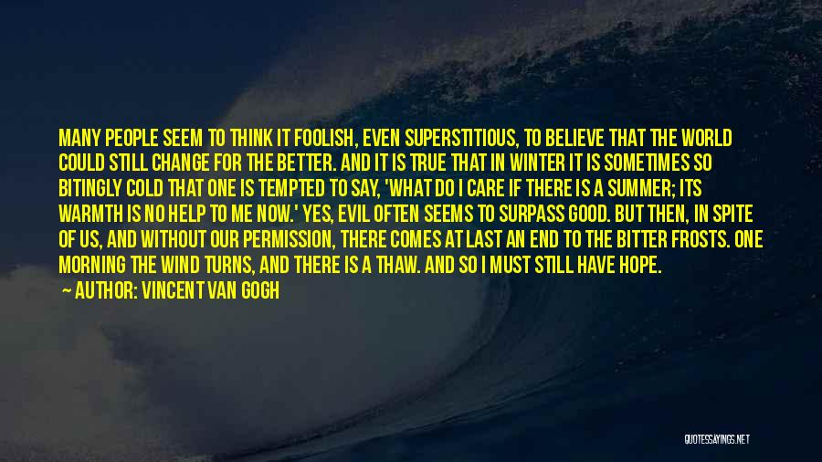Bitter Cold Quotes By Vincent Van Gogh