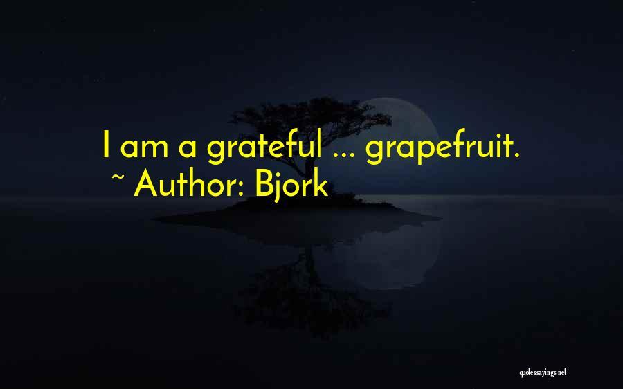 Bjork Quotes 1750962