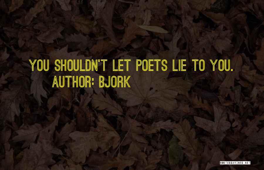 Bjork Quotes 387880