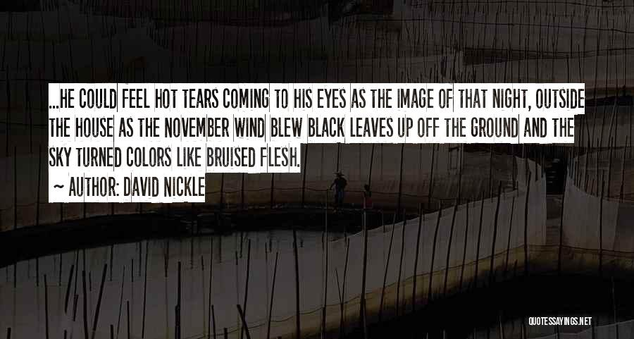 Black Eyes Quotes By David Nickle