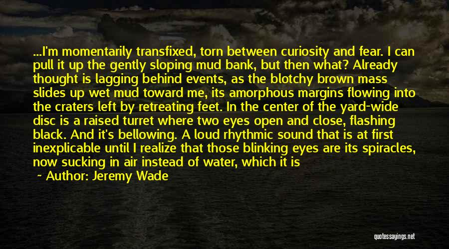 Black Eyes Quotes By Jeremy Wade