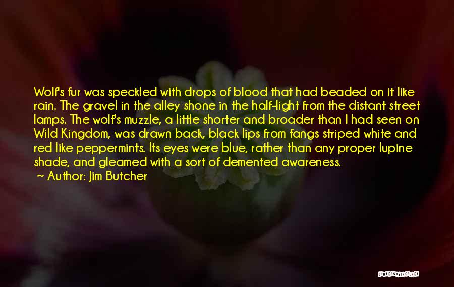 Black Eyes Quotes By Jim Butcher