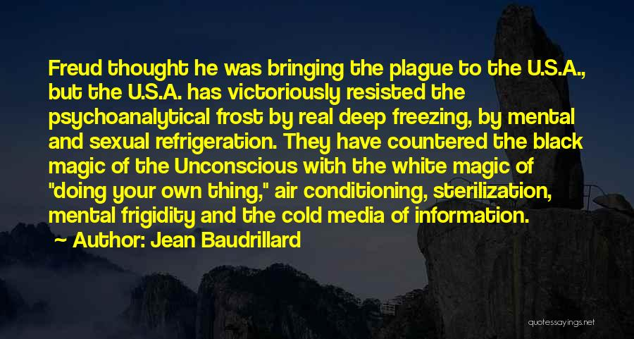 Black Plague Quotes By Jean Baudrillard